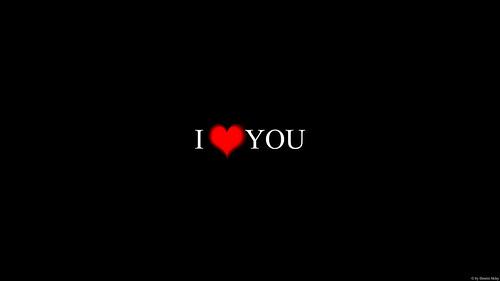♥♥♥ I love you ♥♥♥ 45/365