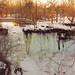 Frozen by Chris Le Texier