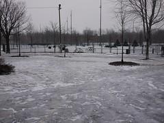 金, 2013-02-01 08:46 - 大氷原と化した公園