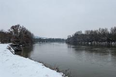 Balade dans la neige - Au bord de la Moselle