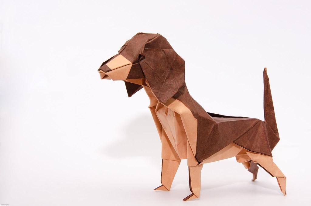 Beagle - Fumiaki Kawahata