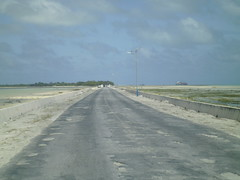 highway(0.0), levee(0.0), beach(0.0), sea(0.0), boardwalk(0.0), wind(0.0), shore(0.0), coast(0.0), asphalt(1.0), horizon(1.0), sand(1.0), road(1.0), walkway(1.0), infrastructure(1.0),
