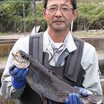 八千穂漁業の信州サーモン