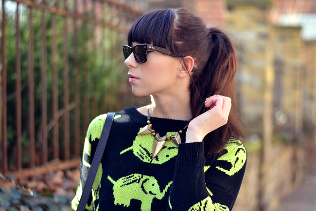 Elephant Neon Jumper Black Yellow Outfit CATS & DOGS 6