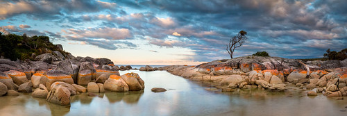 ocean longexposure sunset sky seascape water clouds nikon rocks pano fineart australia panoramic tasmania tas d800 bayoffires binalongbay brucehood d800e