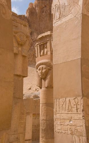 temple cow ancient goddess egypt pharaoh luxor thebes krava hatshepsut ancientegypt hator hathor hram faraon deirelbahari djeserdjeseru hatchepsut newkingdom mortuarytemple božica thebannecropolis xviiidynasty luksor البحري egipat hatšepsut الدير xviiidinastija novokraljevstvo posmrtnihram drevni zapadnateba