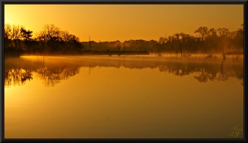 "sunlight mist lake water sunrise golden pond texas highlights bayou rays pasadena a700 ""sony a700"" bayou"" ""armand wanam3 sunrays5"