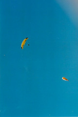 Paragliders, Charmouth