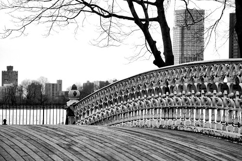 Bridge 27 Central Park NYC ( 09)