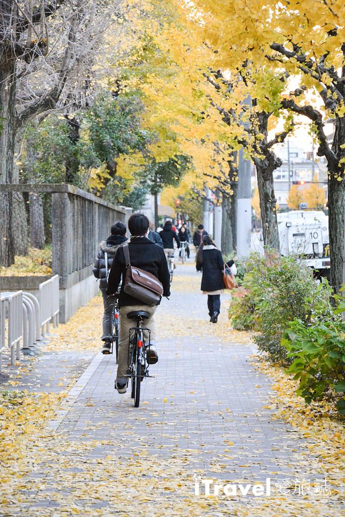 《关西京阪自由行》九天八夜赏枫行程攻略:京都与大阪的红叶共舞银杏美景。