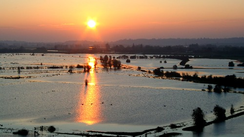 morning winter reflection water sunrise golden flooding underwater somerset farmland swans moors floods southlake aller slm burrowmump somersetlevels burrowbridge parrett southlakemoor