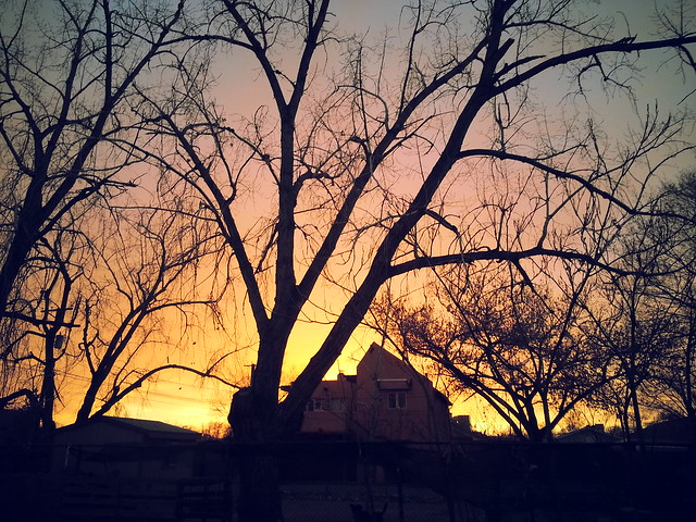 02.08.13 Sunset.