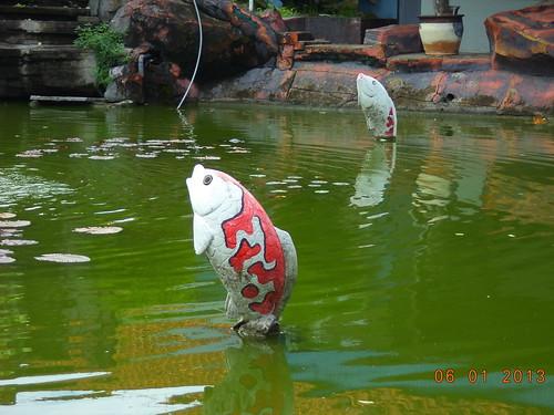 Kolam Ikan Apotik Askes by Blogermie