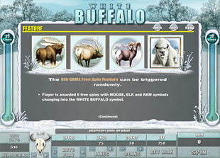 White Buffalo Bonus Game