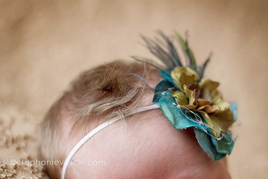 lexington-kentucky-newborn-photographer-2648