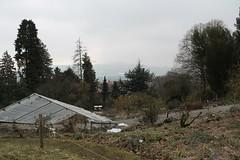 Botanischen Garten der Universität Zürich