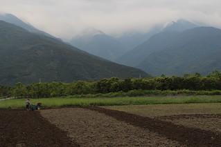 第二梯次生態工作假期志工們完成公田整理。