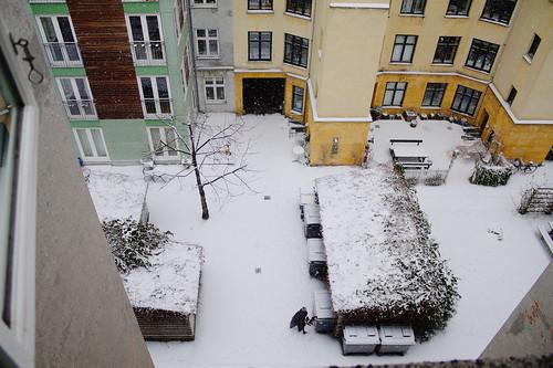 Good_Morning_Snow copy