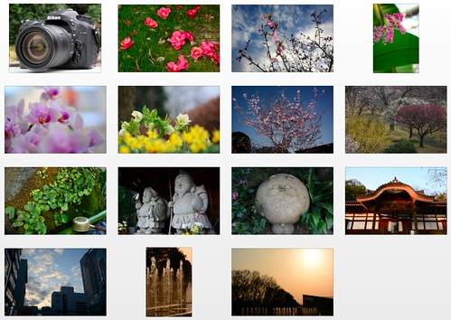Nikon D7100 -- Full-resolution sample photoa