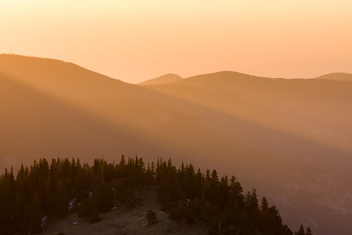 morning mountains yellow forest sunrise spring colorado unitedstates evergreen rockymountains sunrays mountevanswilderness