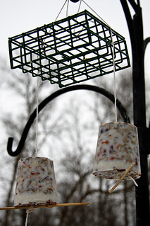 Homemade Suet hanging outside