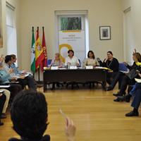 Pleno de la Junta Municipal de Distrito