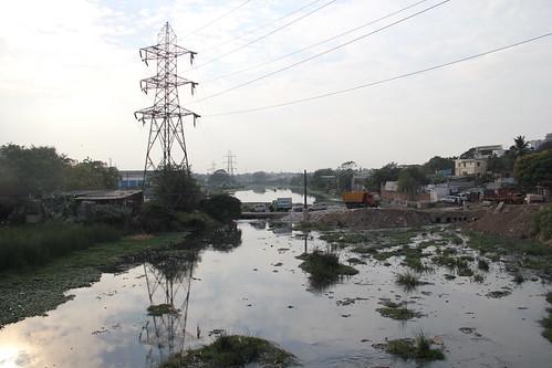 The Cooum at Arumbakkam