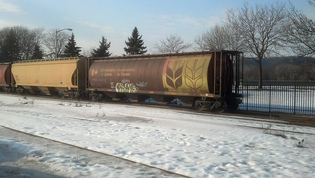 parked train cars