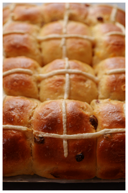 Hot Cross Buns© by Haalo