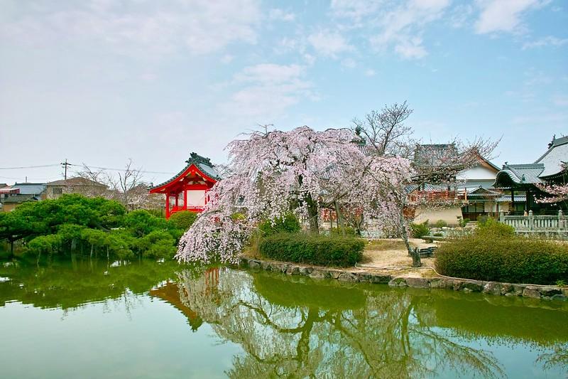 宇賀神社 #5