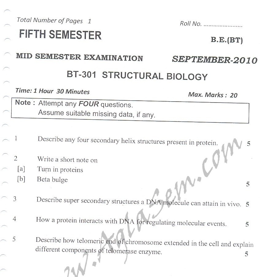 DTU Question Papers 2010 – 5 Semester - Mid Sem - BT-301