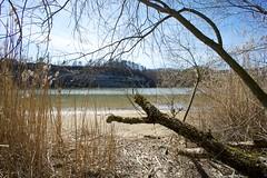 Räsch - Lake in Spring 6