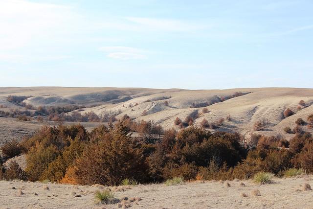 Sand Hills, Nebraska by CC user nebraskaoutback on Flickr