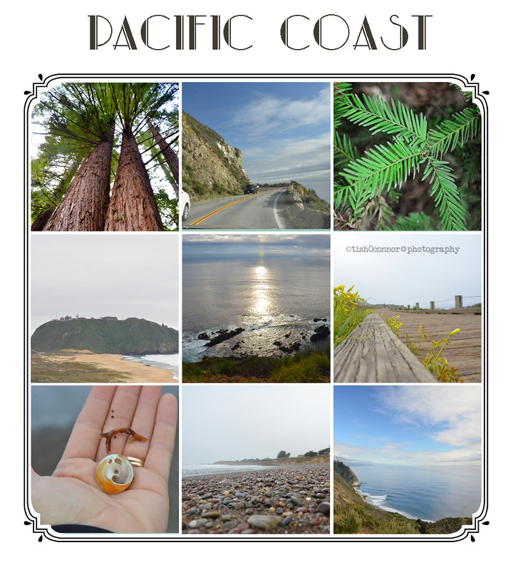 pch collage 3