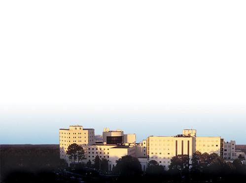 hospital skyline2005 (2)