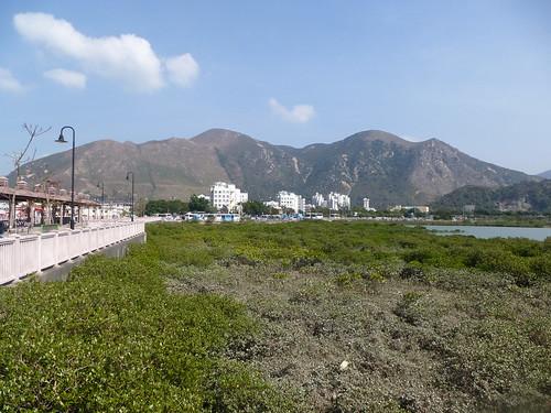 HK13-Lantau3-Tai O (5)