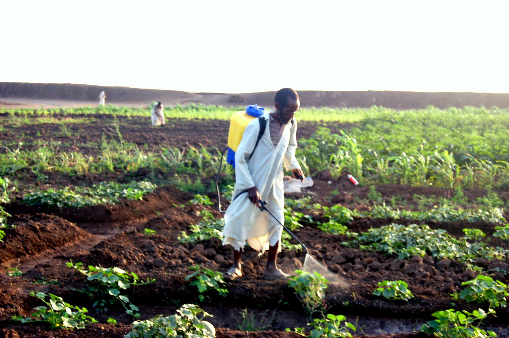 Pesticide Application - Sudan
