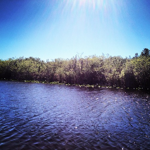 River of Grass. #everglades #florida #igersftl