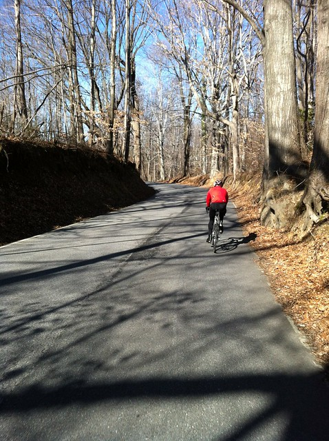 Jonathan rides through the woods