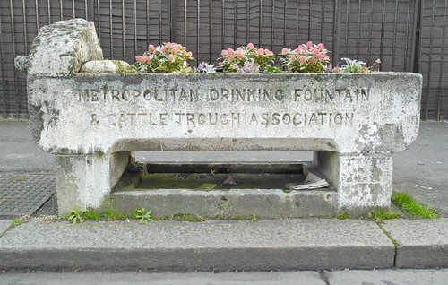 Metropolitan Cattle Trough
