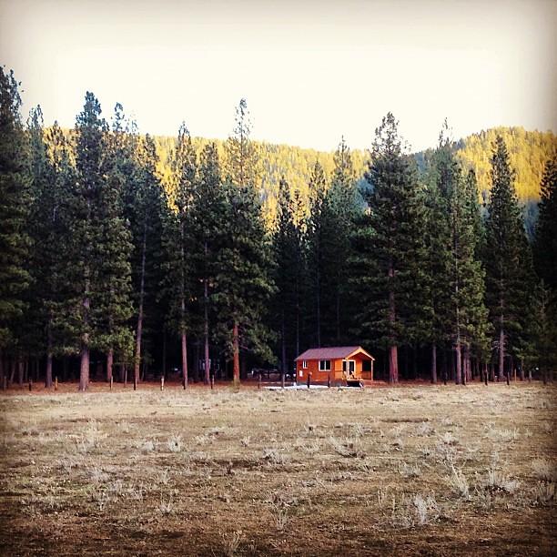 guest-cabin-sierra-nevadas