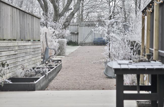 wintergarden 8
