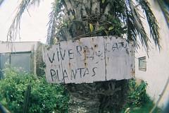 Uruguay 2013