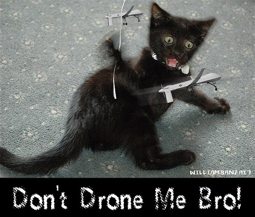 DON'T DRONE ME BRO! by Colonel Flick/WilliamBanzai7