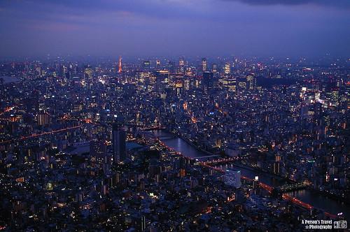 一個人的東京