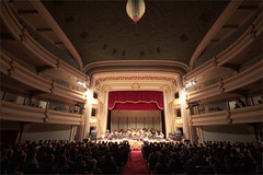 musician, function hall, performing arts, theatre, opera, musical theatre, stage, theatre, auditorium, audience, opera house,