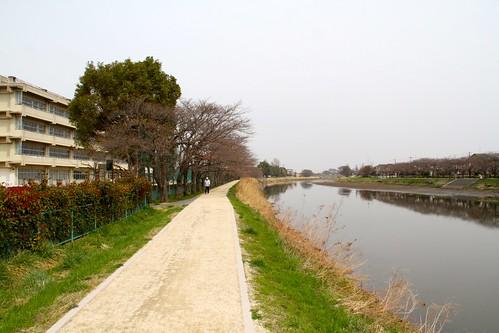 古利根川遊歩道