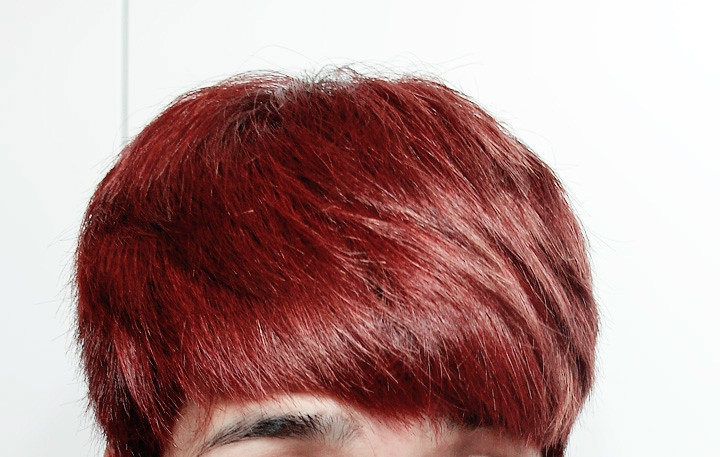 typicalben final hair colour by henna hair dye
