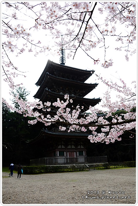 醍醐寺 (2).jpg