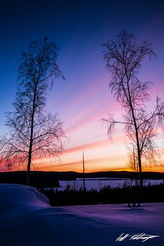 blue trees winter sunset red orange sun lake snow cold nature yellow pine clouds forest finland landscape evening frozen shadows hill birch centralfinland middlefinland leppälahti deadstandingtree jyväskyläsubregion